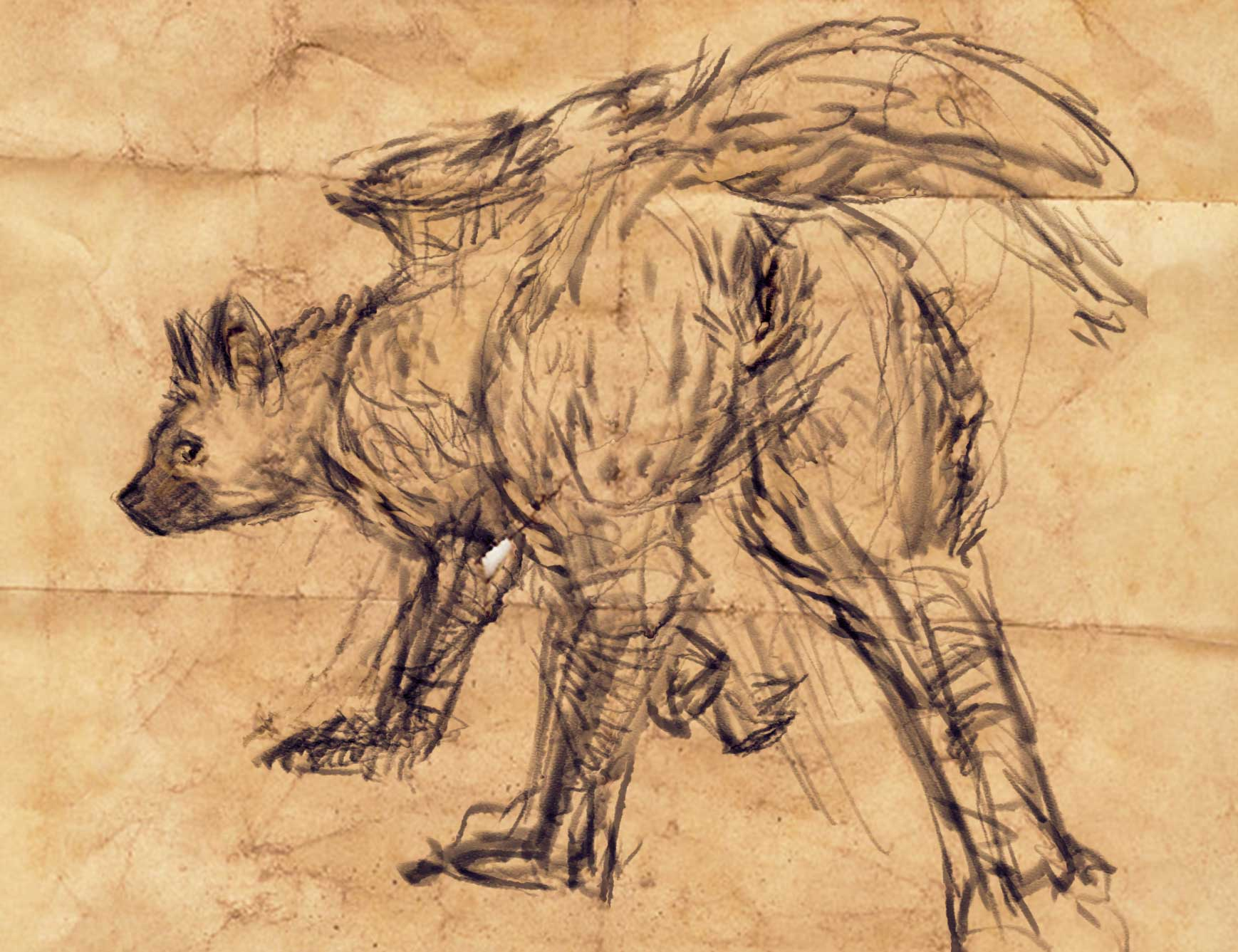 trico the guardian evil last Conker bad fur day sunflower